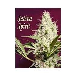 Sativa Spirit