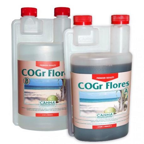 COGR Flores A+B 1 litro
