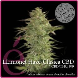 Llimonet Haze Clásica CBD 1 semilla
