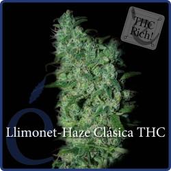 Llimonet Haze Clásica THC 1 semilla