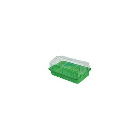 Mini Invernadero sencillo