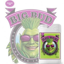 Big Bud Liquid 500 ml.