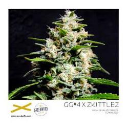 GORILLA GLUE4 X ZKITTLEZ, 25 semillas regulares