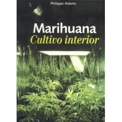 Marihuana Cultivo interior