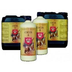 Cocos A&B Nutriente para Coco ( 1 + 1 L. )