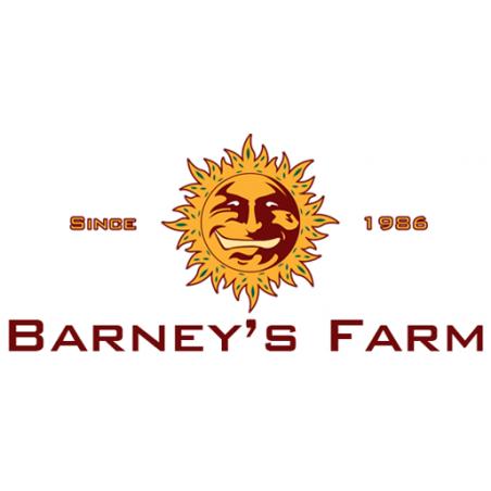 Barney's fram