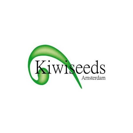 Kiwiseeds